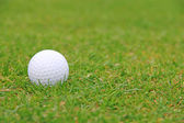 Golf ball on course — 图库照片