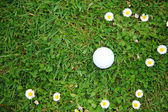 Golf ball on course — Stock Photo