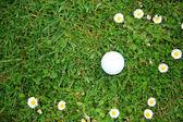 高尔夫球在球棒上课程 — 图库照片