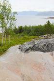 Rock carvings at Alta — Stock Photo