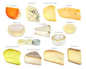 French cheese collection — Stock Photo