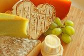 Französischer käse — Stockfoto