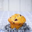 Blueberry muffin — Stock Photo #12193230