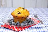 Blueberry muffin — Stockfoto