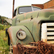 Old rusted truck - Stock Photo