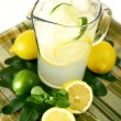 Lemonade — Stock Photo #12252284