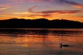 Colorful sunset on lake — Stock Photo