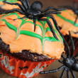 Spider cupcake — Stock Photo