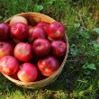 Постер, плакат: Red apples