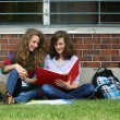 Friends study outside — Stock Photo