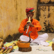 Snake charmers - Stockfoto