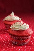 Two red velvet cupcake — Stock Photo