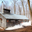 Stock Photo: Sugar shack