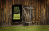 Barn door open on green landscape — Stock Photo