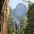 El Capitan — Stock Photo #30634977