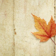 Maple leaf — Stock Photo #34188643