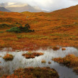 Highlands, Scotland — Stock Photo #34366477