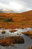 Highlands, Scotland — Stock Photo
