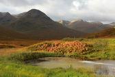 Szkocja — Zdjęcie stockowe