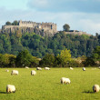 stirling castle — Stock Photo