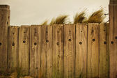 Fence and the beach — Stock fotografie