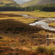 Stock Photo: Scottish landscape