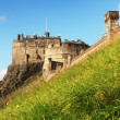 Edinburgh castle — Stock Photo #35423337