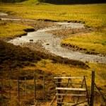 Scottish landscape — Stock Photo