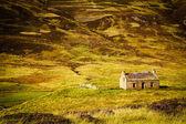 Taş ev — Stok fotoğraf