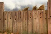 Fence and the beach — Stock Photo