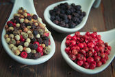 Pepper spices — Stock Photo