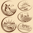 Agriculture landscape — Stock Vector #35415039