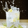 Stock Photo: Cocktail with gin and tonic. Splashing