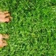 Overhead photo of feets on grass background. — Stock Photo #33059551