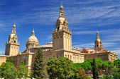 National Art Museum of Catalonia. — Stock Photo