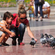 Stock Photo: Pigeons feeding.