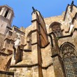 The Barcelona cathedral.  — Stock Photo