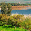 Stock Photo: KInneret lake.
