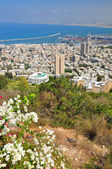 Haifa landscape. — Stock Photo