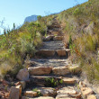 Hiking Path on table Mountain, South Africa - Stock Photo