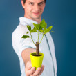Young man holding a small tree — Stock Photo