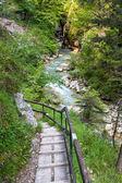 Ruta de senderismo en los alpes austríacos — Foto de Stock