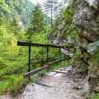Stock Photo: Hiking path in AustriAlps