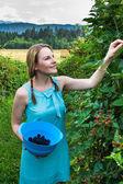 采草莓的蓝色衣服的年轻女人 — 图库照片