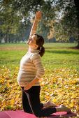 Grossesse en santé - exercice en plein air — Photo