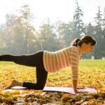 Healthy pregnancy - exercising outdoor — Stock Photo #22569735
