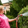 Senior woman watering garden — Stock Photo