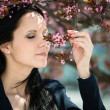 Beauty - woman and Flowering tree — Stock Photo