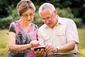 Senior couple with smartphone — Stock Photo