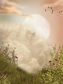Magic landscape — Stock Photo